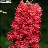 Go Garden 200 PC gigantes Delphinium Flores Rocket Larkspur colorido Plantas para jardín Decoración Bonsai Plantación de corte magnífico Flor: A3