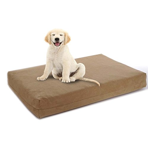 Back Support Systems Premium Hund Betten-Gel Orthopädische Memory Foam-100% Made in USA-Luxus Waschbar Pet Bett,-X-Large 101,6x 88,9x 11,4cm, Xtra Large, Hautfarben