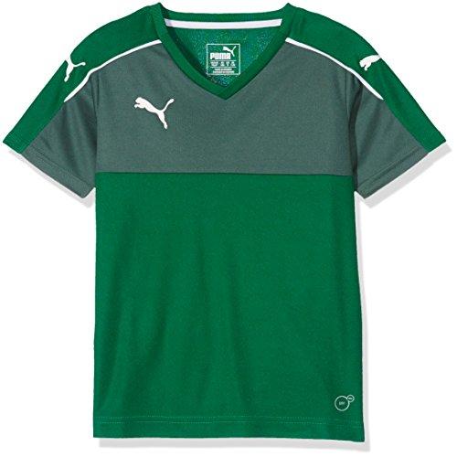 PUMA Kinder T-Shirt Accuracy Short Sleeve, Power Green-White, 128