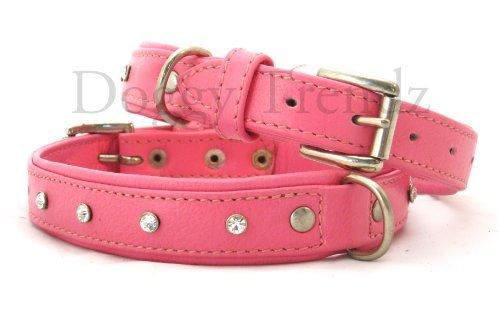 Avon Pet Products Diamant Strass Weiches Leder Hundehalsband - Avon Fuß