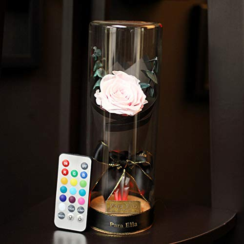 Artificial & Dried Flowers - Lighted Glass Cover Fresh Preserved Rose Flower Lmmortal Eternal 39 S Day Gift Rustic Wedding Love - Flowers Dried Artificial (Hibiscus Flower Vase)