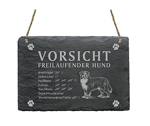 Slate Bernese Mountain Dog–Caution Freilaufender Hund