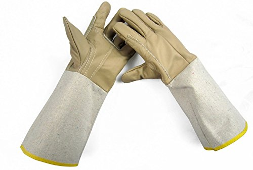 e, Anti-Biss, Spezielle Handschuhe Für Rattenfang, Anti-White Rat Hamster Beißende Handschuhe, Flexibel Und Leicht Zu Reinigen ()