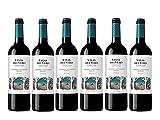 Viñas Del Vero Tinto Cabernet-Merlot - Vino D.O. Somontano - Paquete de 6 botellas de 750 ml - Total: 4500 ml