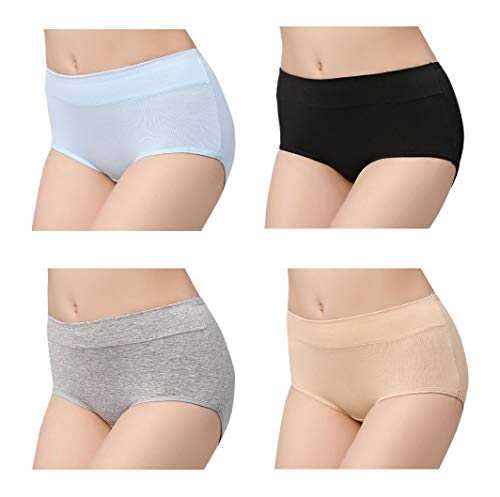 FEMAROLY Classic Style Briefs Comfort Breathable Underwear 4-Pack for Women