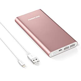 POWERADD Pilot 4GS 12000mAh Power Bank Apple Lightning Cargador Portátil Dual Puerto Salida (3A Salida de Alta Velocidad) para iPhone iPad iPod Samsung y Más-Oro Rosa (Lightning Cable Incluido)