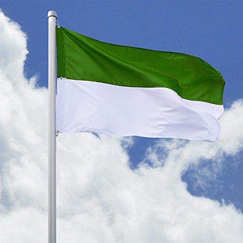 Deitert Schützenfahne mit Schützenlogo grün-weiß Hissfahne Quer - Flagge, 120x200cm
