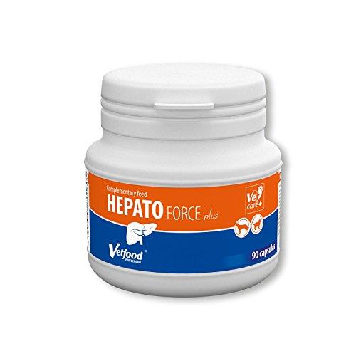 Vetfood Hepatoforce Plus | Beugt Lebererkrankungen vor | Bei Leberverfettung | Unterstützt die Leber | Für Hunde & Katzen | 90 Kapseln