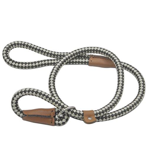 Produkt: Trainingshundeleine mit Halsband
