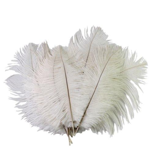 RHX - 10 piume decorative di 15-20 cm, colore bianco