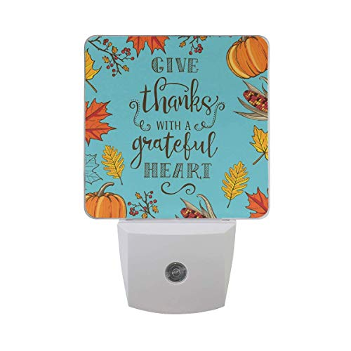 DFISKK Nachtlicht Set of 2 Vintage Thanksgiving with Oak Maple Leaf Autumn Leaves Branch Red Berry Pumpkin Indian Corn Lettering On Blue Auto Sensor LED Dusk to Dawn Night Light Plug in Indoor for A -