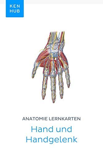 Anatomie Lernkarten: Hand und Handgelenk: Lerne alle Knochen ...