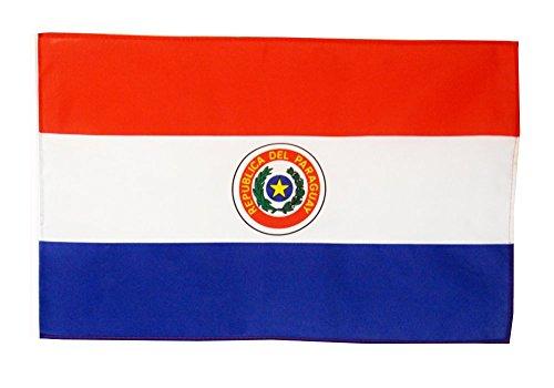 Flagge / Fahne Paraguay + gratis Sticker, Flaggenfritze®