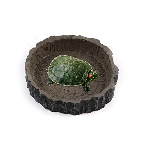FidgetGear Reptiliennapf, rund, aus Kunstharz, für Wasserfutter, Schildkröte, Schildkröte