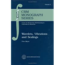 Wavelets, Vibrations and Scalings