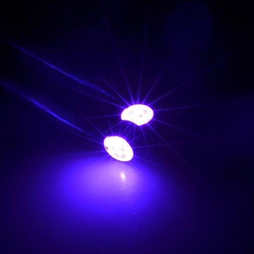 Lesypet 1 Paar LED Ohrringe Glowing Light Up Art Ohr-Tropfen-hängender Magnet für Party-Partei-Lila Licht (Kostengünstige Kostüme)