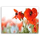 ge Bildet® hochwertiges Leinwandbild XXL Pflanzen Bilder - Mohn - Blumen Rot Natur - 100 x 70 cm einteilig 2206 D