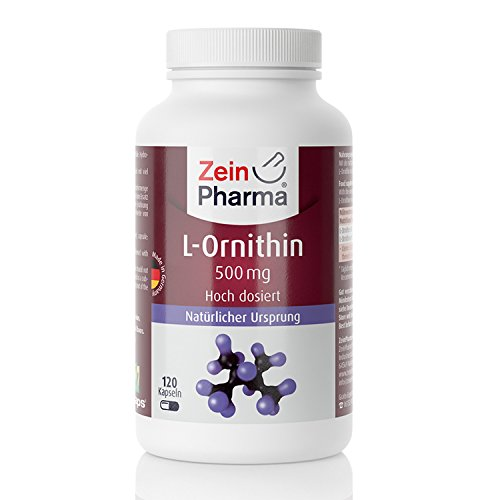 41uSojxLdaL. SS500  - ZeinPharma L-Ornithin 500mg • 120 Capsules (5-weeks-supply) • gluten-free, vegan, kosher & halal • Made in Germany