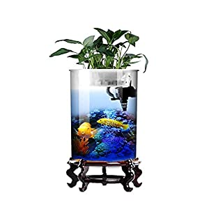 HeKai Cylindrical Fish Tank Living Room Glass Vertical Aquarium Small and Medium Desktop Filter Goldfish Tank (Color…