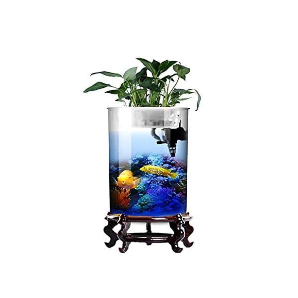 HeKai Cylindrical Fish Tank Living Room Glass Vertical Aquarium Small and Medium Desktop Filter Goldfish Tank (Color…