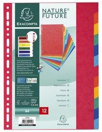 10er Pack Register A4 Manila farbig (10 Register, 12 teilig)