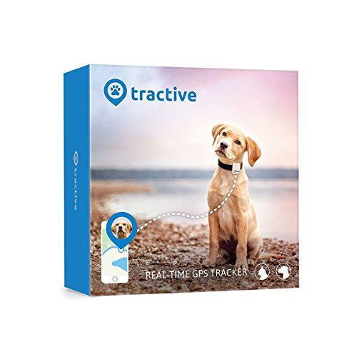 Tractive GPS Tracker für Hunde und Katzen