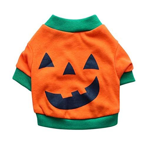 Balacoo Hund Halloween T-Shirt Kürbis-Halloween Haustier Kostüme Kopf T-Shirt Hund Halloween Shirts für kleine mittlere Hunde-s
