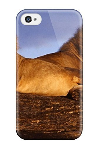kellie-diy-for-8-lions-protective-case-cover-oqytilpxbqe-skin-iphone-4-4s-case-cover