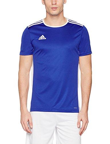 Herren M 18 Adidas Entrada Bluewhite Jersey Bold shrQtd