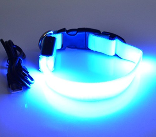 LED Leuchthalsband Basic 3 per USB aufladbar, Blau, Größe S