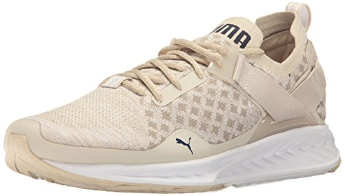 PUMA-Mens-Ignite-Evoknit-Lo-Pavement-Cross-Trainer-Shoe