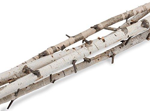 NaDeco Birkenzweige 2m im Bund mit 5 Stück | Birkenzweig | Birkenäste | Birken Bündel | Birken Zweige | Birken AST | Birkenstamm | Birken Deko