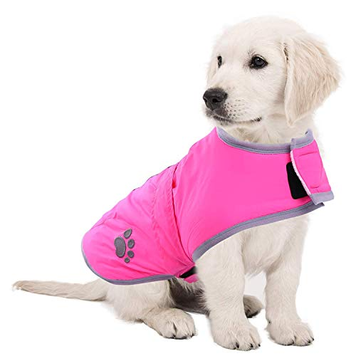 Pethiy Hundejacke, wasserdicht, Winddicht, wendbar, warm, für kleine und mittelgroße Hunde