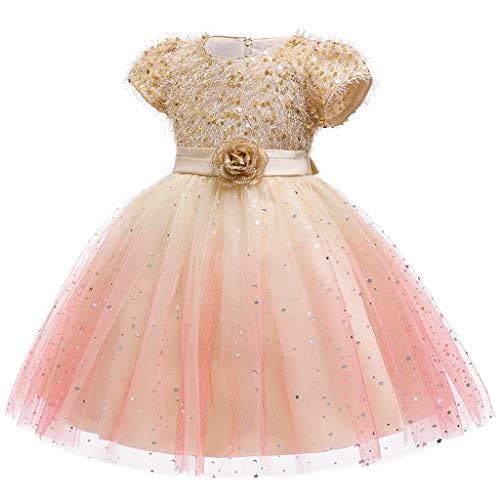FEIXIANG Mädchen Spitze Tüll Kleid Kinder Prinzessin Hochzeitskleid Kleinkind Und Baby Mädchen Pailletten Kurzarm Blume Brautkleid Hochzeit Blumen Kleid 3-9 Jahre Alt