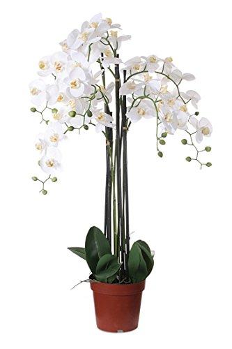 levandeo Weiße Orchidee 115cm Pflanze XXL Kunstblume Kunstpflanze Dekoration Blume Dekoblume