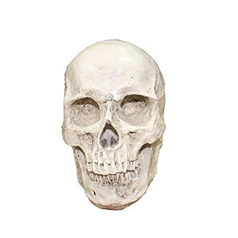 LUOEM Schädel Deko Resin Schädel Realistische menschliche Schädel Halloween Skelett Schädel Dekorationen