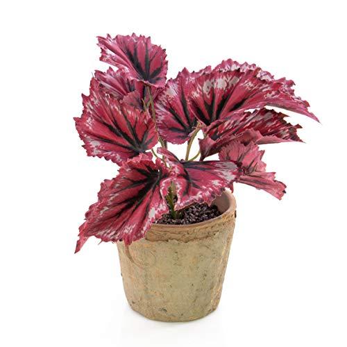 artplants Set 6 x Künstliche Blattbegonie BENICE im Terracotta Topf, rot, 20 cm - 6 Stück Schiefblatt künstlich/Kunstpflanze Begonie