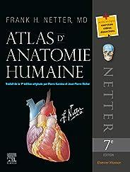 Atlas d'anatomie hum