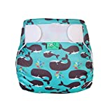 TotsBots Reusable Swim Nappy, Finn, Size 2, Blue with Whales