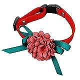 HuhuswwBin Hundehalsband, modisch, SAMT, Blume, Schleife, verstellbar, Halsband für Katzen