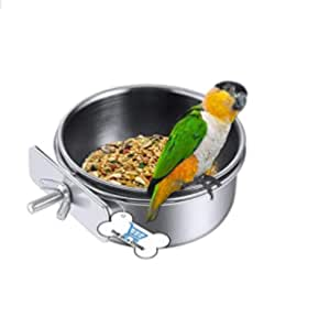 THE DDS STORE Stainless Steel Food Water Bowl for Pet Bird Crates Cages Coop Dog Cat Parrot Bird Rabbit Pet 500.ML Pack of 1