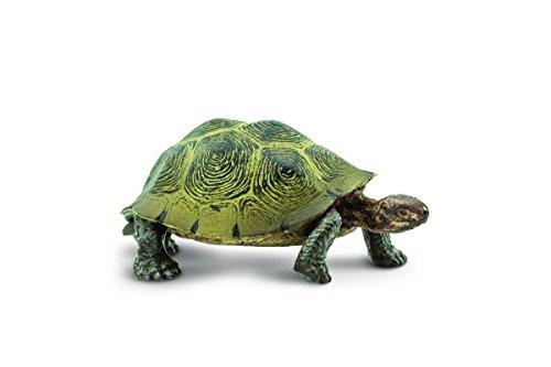 Safari S295329 - Tortuga en Miniatura Wild North American Wildlife Desert Tortoise