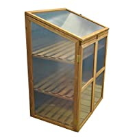 Selections Wooden Framed Polycarbonate Growhouse Mini Greenhouse