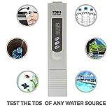 ALONGB Tester di purezza dell'Acqua Tester di Prova dell'Acqua TDS-3 Tester di qualità dell'Acqua Digitale Controllo di qualità idroponica per Piscina Idroponica Filtri per acquari