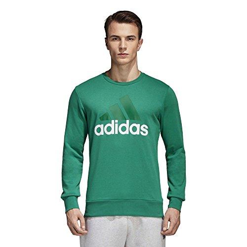 adidas Herren Essentials Big Logo Crew Sweatshirt Bold Green
