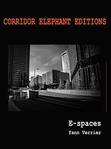 E-spaces: e-book photographique