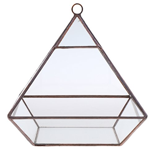 Gazechimp Glas geometrische Diamant Glas Sukkulente Pflanzen Pflanzgefäß - 15.5x15.5x17cm