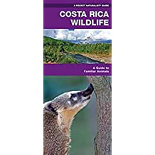 Costa Rica Wildlife: A Folding Pocket Guide to Familiar Species (A Pocket Naturalist Guide) (English Edition)