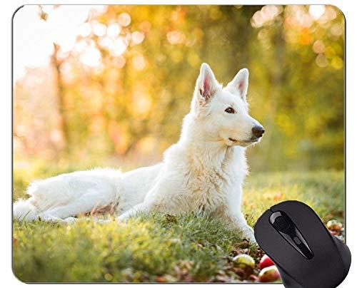 Naturkautschuk-Mauspad mit Schweizer Schweizer Schäferhund bedruckt - genähte Kanten