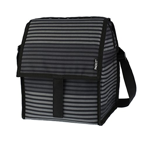 packit-deluxe-sac-refrigerant-gray-stripe-65-l